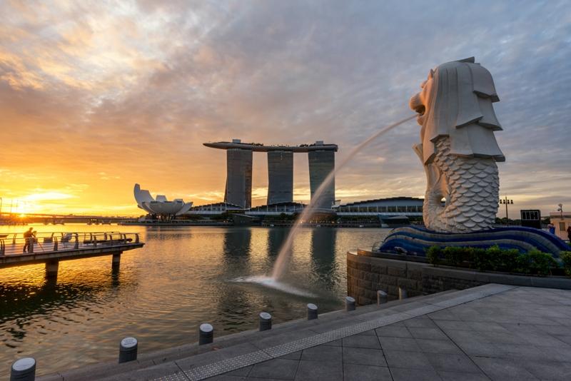 シンガポールと日本。遠距離恋愛の末に〈結婚相談所のリアル〉